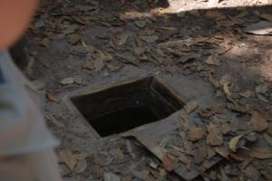 trapdoor in jungle